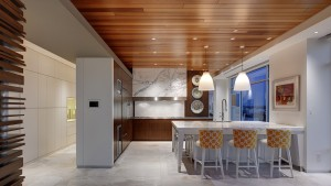 Adagio - Cook it and they will come - HAUS Architecture, Christopher Short, Indianapolis Architect