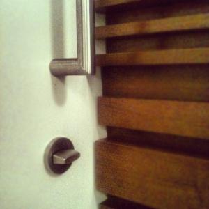 Adagio Penthouse Interior - Powder Room Door Detail - HAUS Architecture, Christopher Short, Indianapolis Architect