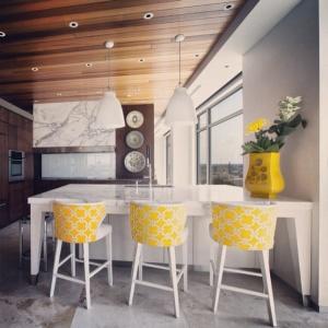 Adagio Penthouse Interior - Kitchen - Christopher Short, Architect, Indianapolis, HAUS Architecture