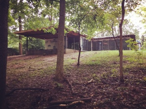 Mid-century Modern Renovation 2 - Exterior Progress - HAUS Architecture, Christopher Short, Indianapolis Architect