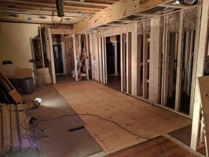 Broad Ripple Modern Craftsman Renovation - floor reframing - WERK Building Modern