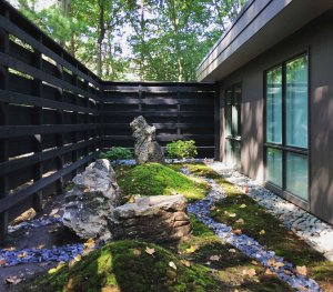 Midcentury Modern Renovation 2 - Private Moss Garden - Christopher Short, Architect, Indianapolis, HAUS Architecture (A2 Design)