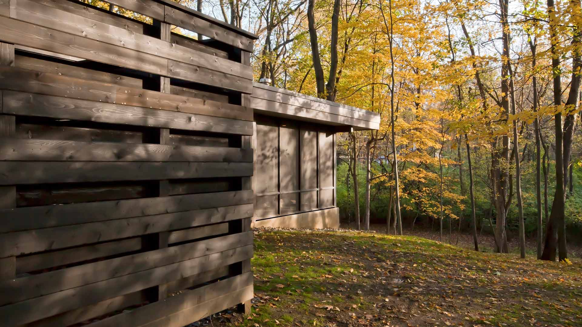 Flat Roofs, large roof cantilever, rainchains, privacy wall, wooded site, sloping site, screened porch, sloping site - Midcentury Modern Renovation - 81st Street - Indianapolis, Christopher Short, Architect, HAUS Architecture