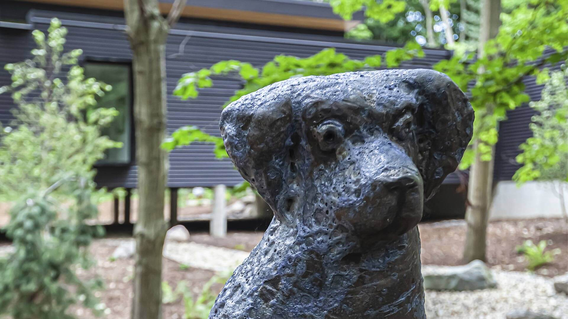 Curious friend stands watch at front entry bridge - Bridge House - Fenneville, Michigan - Lake Michigan