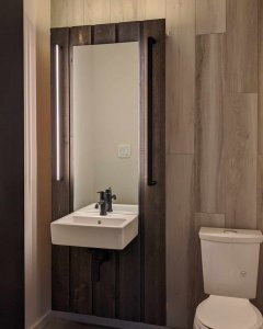 Powder Room continues materiality and form from facade massing - wall hung sink - linear vanity lights - storage niches - Back40House - Pendleton, IN